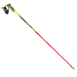 Worldcup Giant Slalom junior's poles