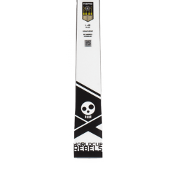 Skis WC Rebels i.GS RD homme + FF Evo 16