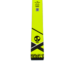 Skis WC Rebels i.GS RD team junior + FF Evo 9