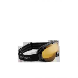 Polarized ski goggles
