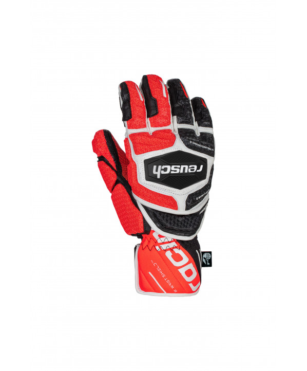 Gants de ski Homme Worldcup Warrior GS