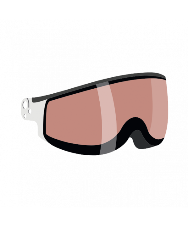 Photochromic visor