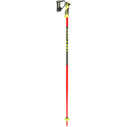 Worldcup Junior SL Ski poles
