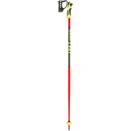 Worldcup Junior SL Ski poles