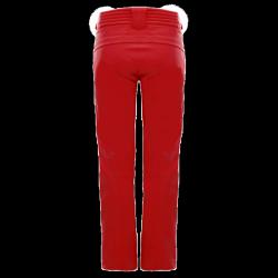Will men's ski pant