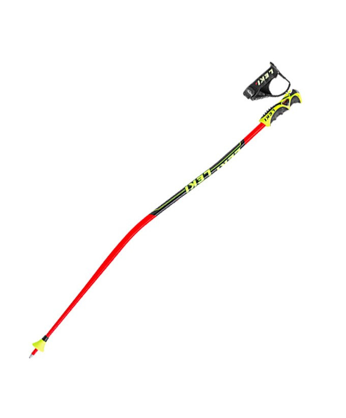 Batons de ski junior WorldCup GS